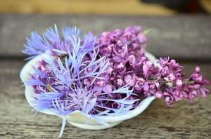 6 astuces naturelles contre les odeurs